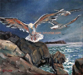 gulls are free - oil